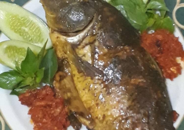 Cara memasak Ikan mas panggang sederhana sedap