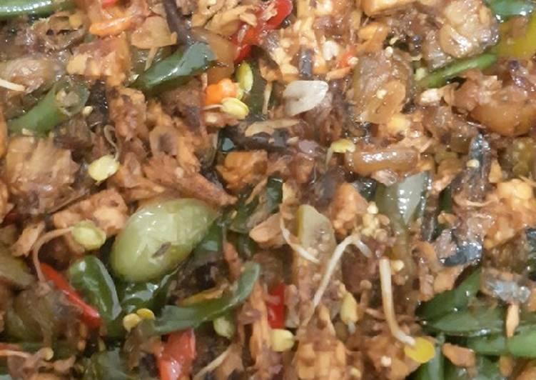 Resep mengolah Oseng tongkol, terong, tempe, cecek yang menggugah selera