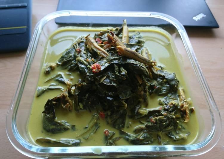Resep mengolah Gulai pucuk ubi / daun singkong (jualan di Belanda)