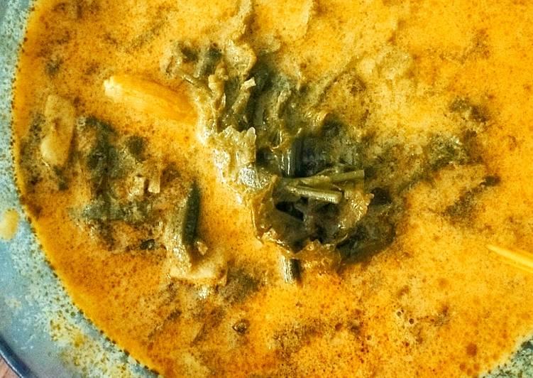 Cara Mudah memasak Gulai pakis (sayur paku) enak