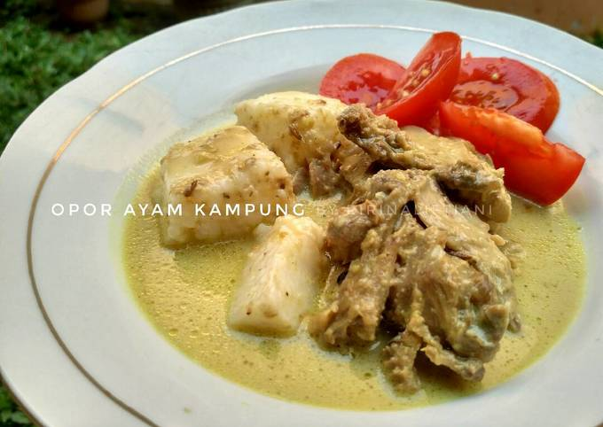 Resep: Opor Ayam Kampung Spesial