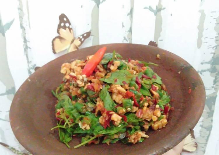 Resep: KaRedok/peNcok kacang panjang+ tempe yang menggugah selera