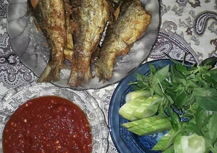 Resep memasak Bandeng presto sedap