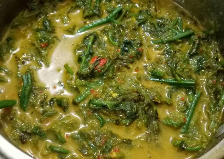 Cara Mudah memasak Gulai Pakis yang bikin ketagihan
