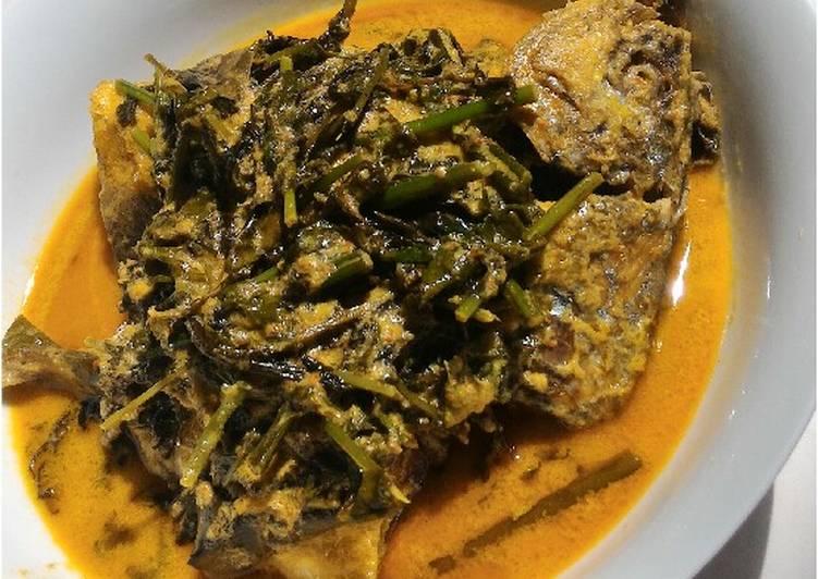 Resep: Gulai Pakis Ikan Kembung yang bikin ketagihan
