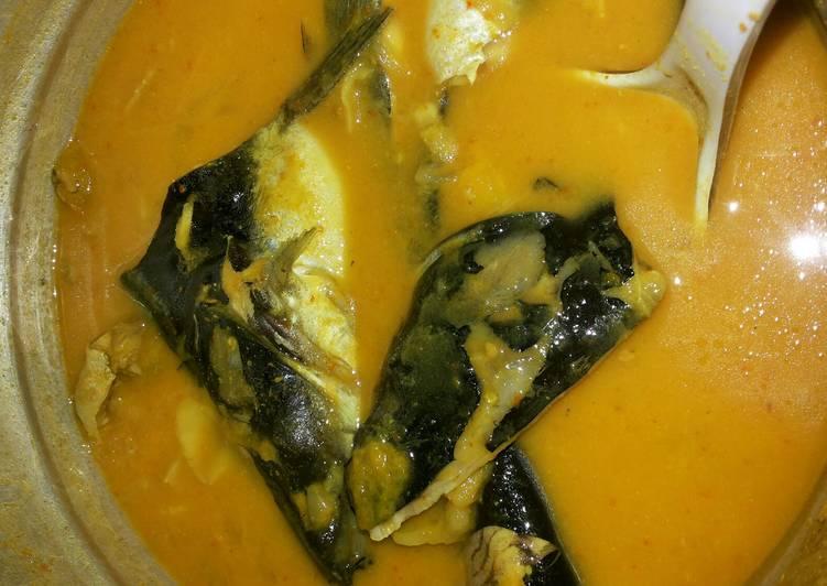Cara Mudah mengolah Gulai Tempoyak Ikan Patin Khas Pagaralam yang bikin ketagihan